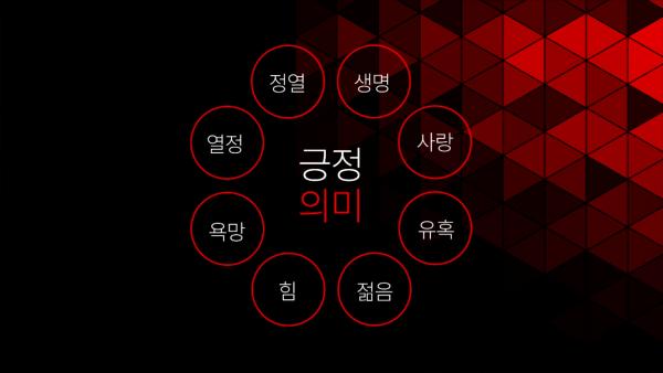 검은색과 여러개의 빨간색 세모 도형 배경, 배경 위에 글 '긍정의미: 생명, 사랑, 유혹, 젊음, 힘, 욕망, 열정, 정열'