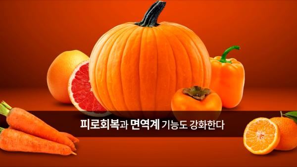 주황색 과일, 채소 등(호박, 오렌지, 당근, 할라피뇨, 귤, 자몽), 과일, 채소 아래 글 '피로회복과 면역계 기능도 강화한다'
